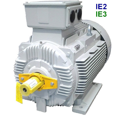 TECO electric motors - Cast Iron ALCA series - IE3
