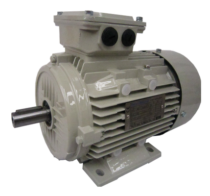TECO-WESTINGHOUSE electric motors - Aluminium ALAA series - IE2